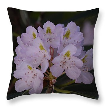 Randolph County Rhododendron Throw Pillow