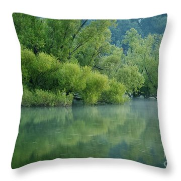 Throw Pillow featuring the photograph Rankin Reflections 2 by Douglas Stucky