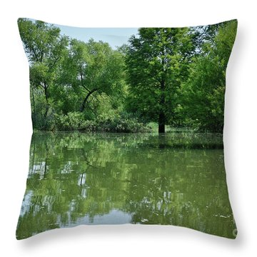 Throw Pillow featuring the photograph Rankin Reflections 3 by Douglas Stucky