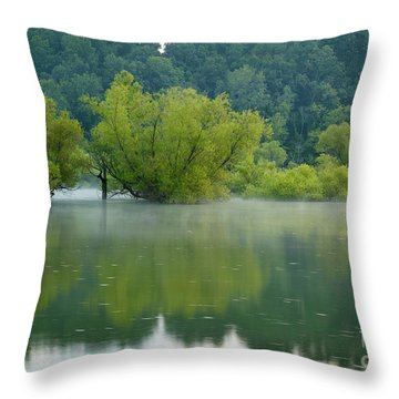 Throw Pillow featuring the photograph Rankin Reflections by Douglas Stucky