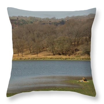 Ranthambore National Park Throw Pillow