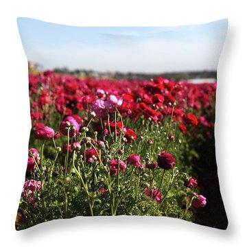 Ranunculus Field Throw Pillow