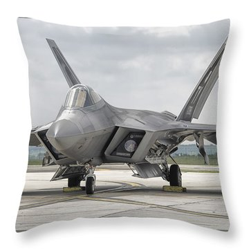 Raptor At Rest Throw Pillow