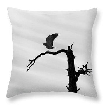Throw Pillow featuring the photograph Raptor Silhouette by Joe Bonita