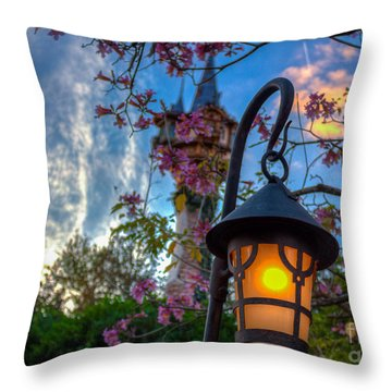 Rapunzel Let Down You Hair Throw Pillow