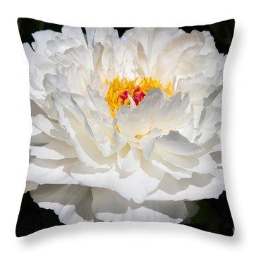 Rare China Peony Throw Pillow