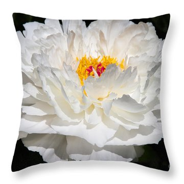 Rare China Peony Throw Pillow