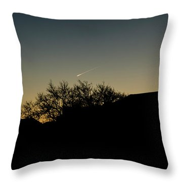 Once In A Life Time Throw Pillow