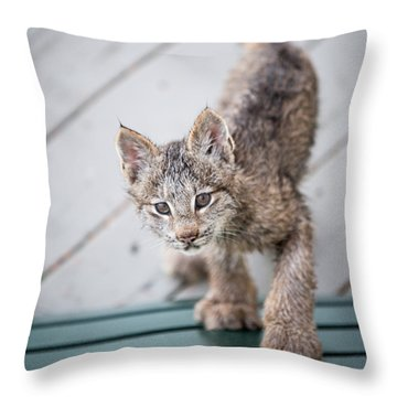Does Click Mean Edible Throw Pillow