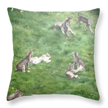 Throw Pillow featuring the photograph Play Together Prey Together by Tim Newton