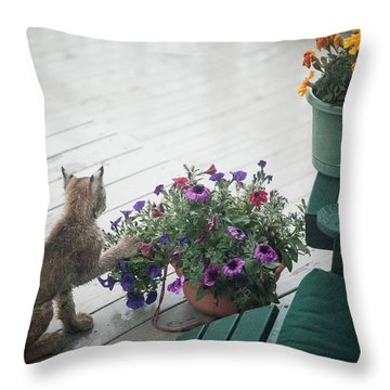Swat The Petunias Throw Pillow