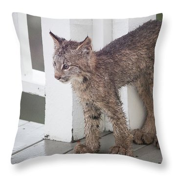 Laser Eyes Big Feet Throw Pillow