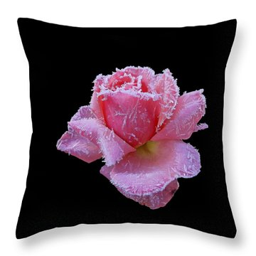 Rare Winter Rose Throw Pillow