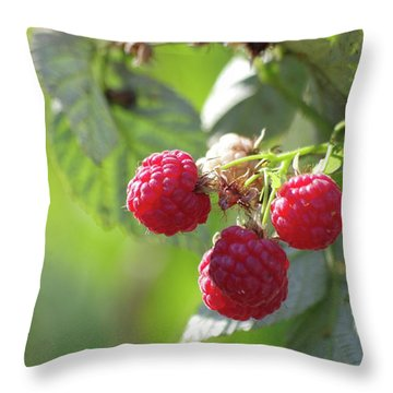 Rasperries Throw Pillow