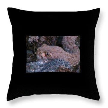 Rattlesnake Portrait Throw Pillow