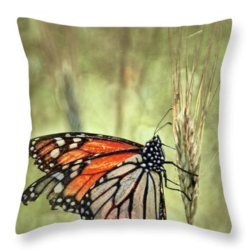 Ravaged Yet Resilient Throw Pillow