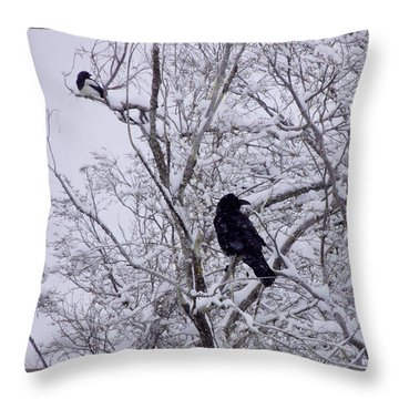 Raven And Magpie Throw Pillow
