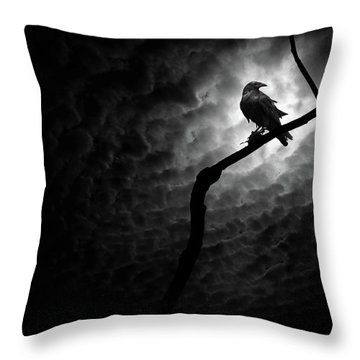 Raven, Death Valley Throw Pillow