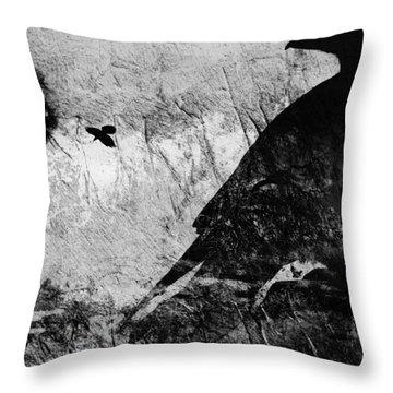 Raven Study 5 Throw Pillow