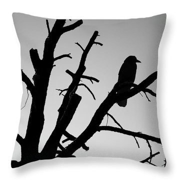Raven Tree II Bw Throw Pillow