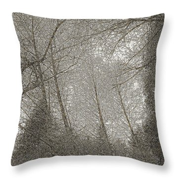 Ravenna Throw Pillow