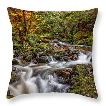 Cascades And Waterfalls Throw Pillow
