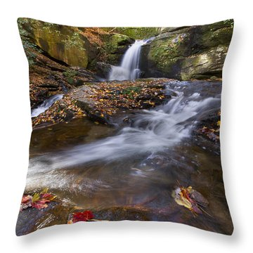 Ravens Cliff Throw Pillow by Debra and Dave Vanderlaan