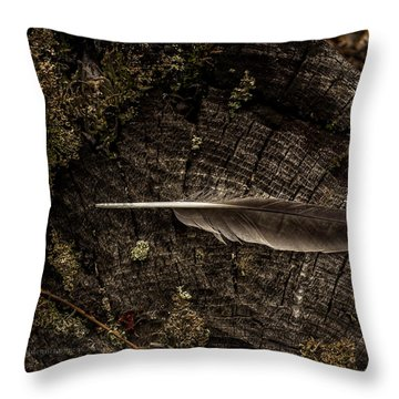 Ravens Feather Throw Pillow