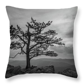 Raven's Roost Throw Pillow
