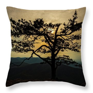 Ravens Roost Hdr Throw Pillow