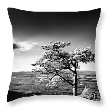 Throw Pillow featuring the photograph Ravens Roost Ir Tree by Kevin Blackburn