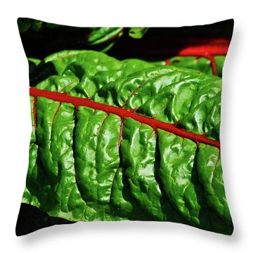 Throw Pillow featuring the photograph Raw Food by Harry Spitz