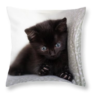 Throw Pillow featuring the photograph Rawr by Amy Tyler