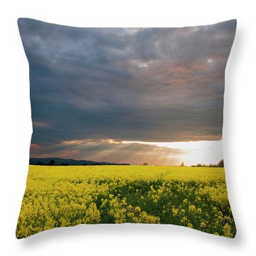 Rays At Sunset Throw Pillow