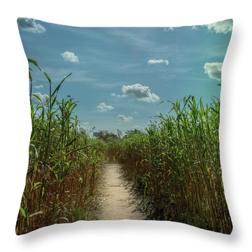 Rays Of Hope Throw Pillow by Karen Wiles