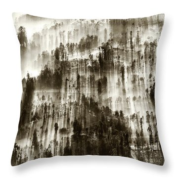 Throw Pillow featuring the photograph Rays Of Light by Pradeep Raja Prints