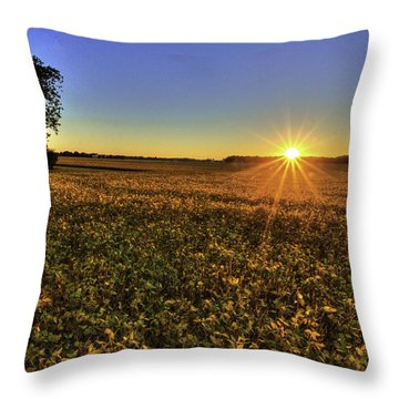Rays Over The Field Throw Pillow