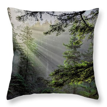 Morning Rays Through An Oregon Rain Forest Throw Pillow