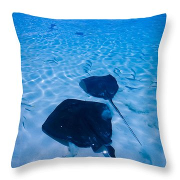 Rays Under Feet Throw Pillow