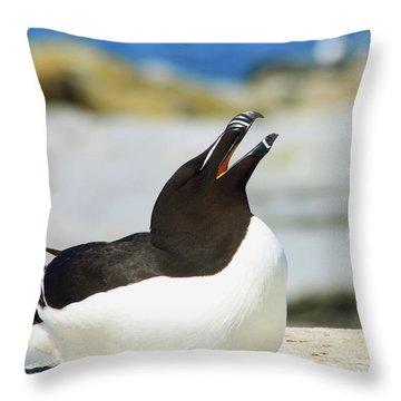 Razorbill Calling Throw Pillow by John Burk