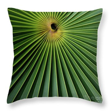 Razzled Rays Mexican Art By Kaylyn Franks Throw Pillow