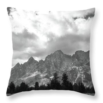 Throw Pillow featuring the photograph Reach To The Sky by Colleen Coccia