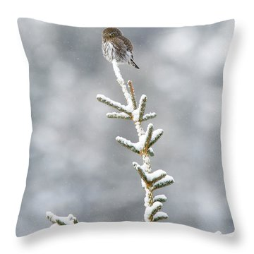 Reaching For The Heavens Throw Pillow