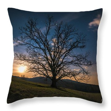 Reaching For The Moon Throw Pillow by Robert Loe