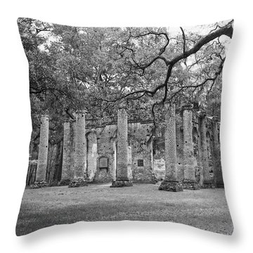 Reaching For The Ruins Throw Pillow