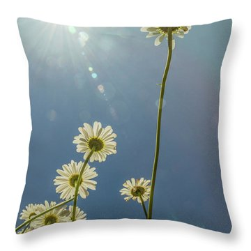 Reaching For The Sun Throw Pillow by Garry McMichael