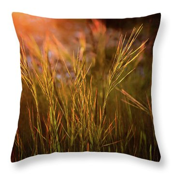 Throw Pillow featuring the photograph Reaching For The Sunset Dark by Mary Jo Allen