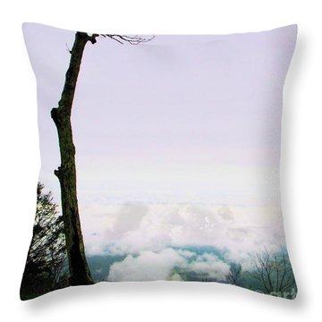 Reaching In The Shenandoah Throw Pillow