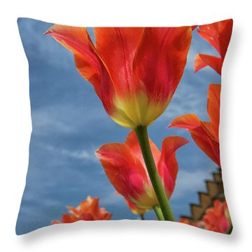 Throw Pillow featuring the photograph Reaching Out by Heather Kenward
