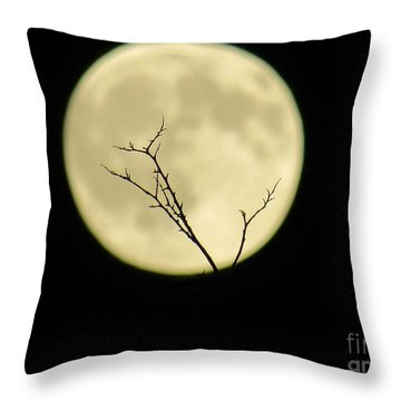 Reaching Out Into The Night Throw Pillow